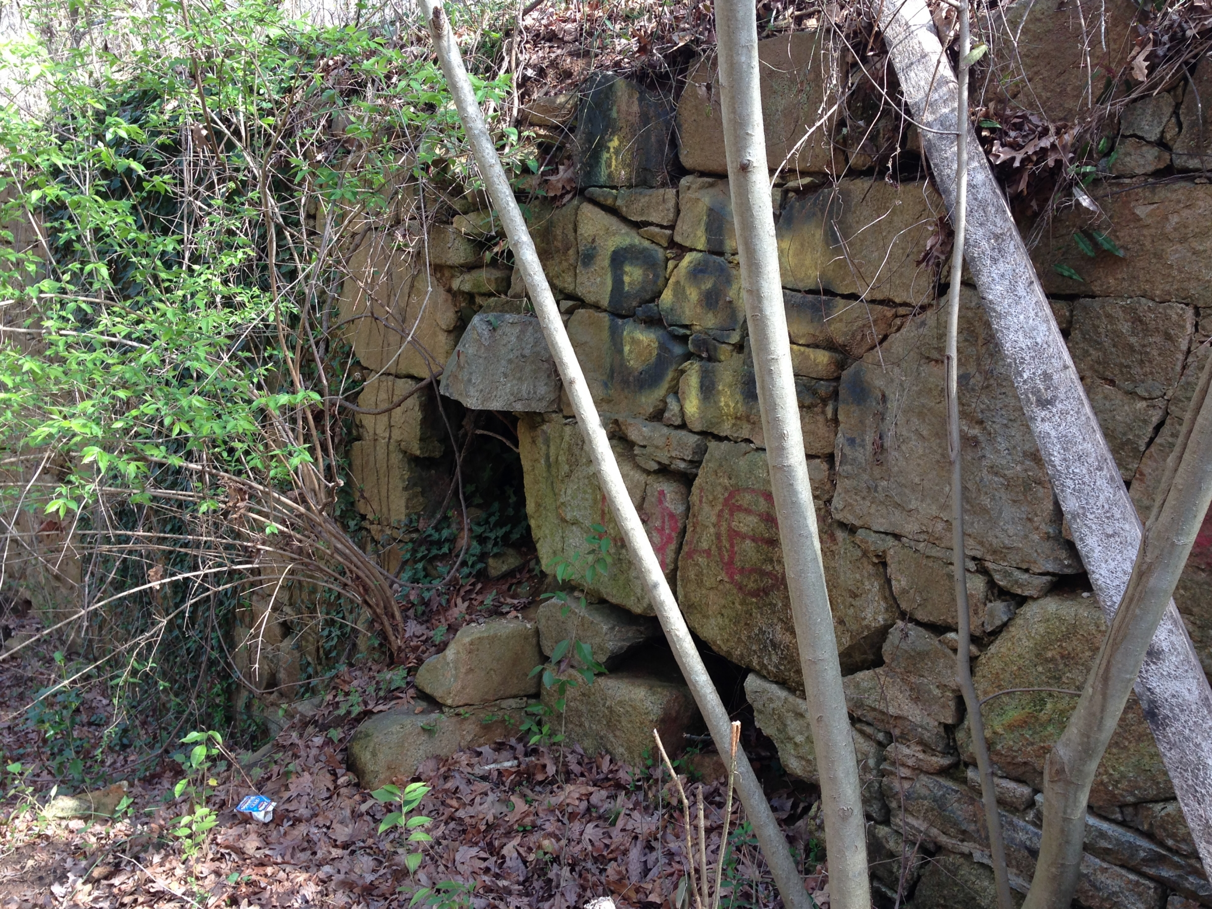 A few rock walls, the foundations, are all that remain of a mill built in the 1850s near Briar Creek. Photo: Mary Newsom