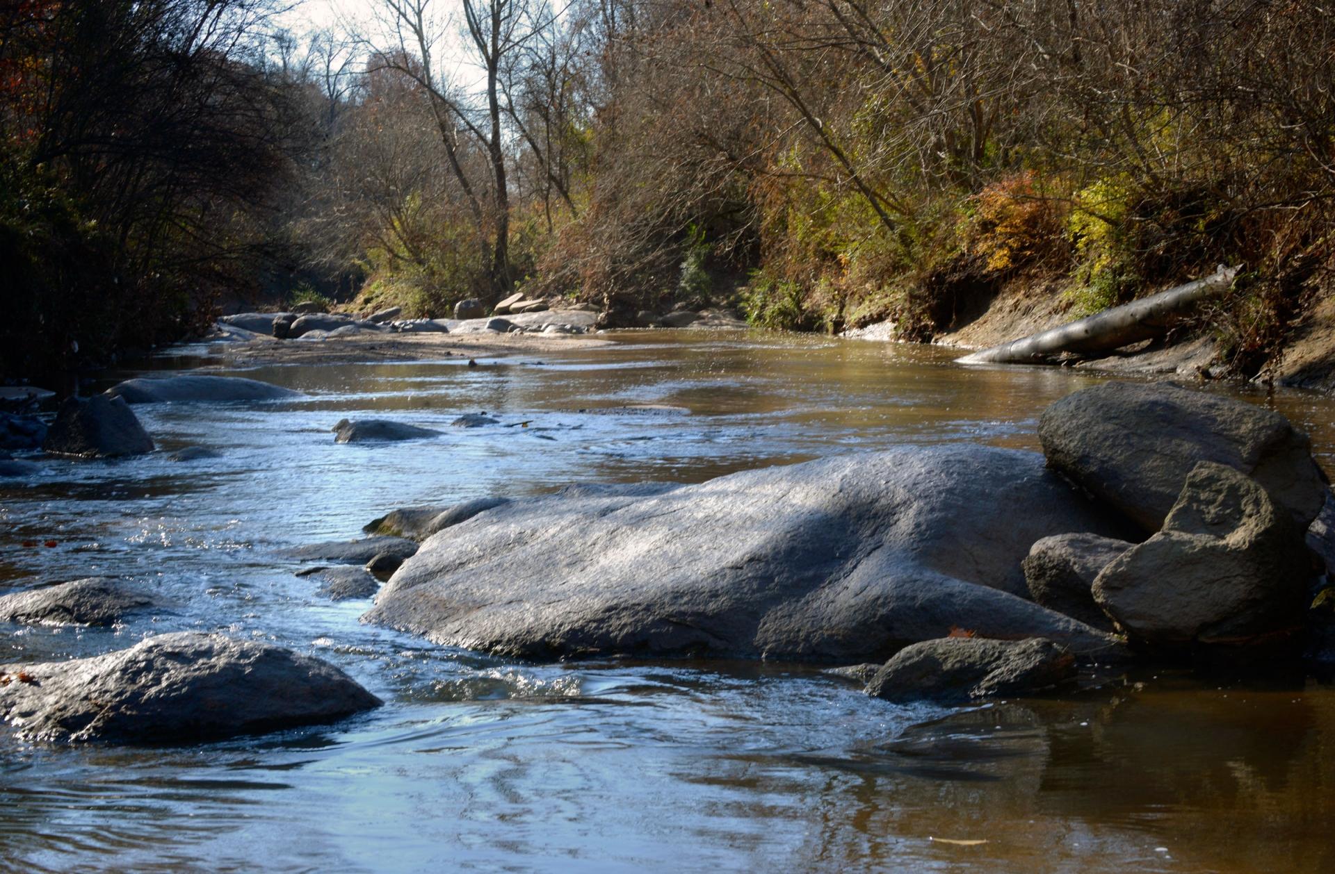 Little Sugar Creek in south Charlotte. Photo: Nancy Pierce