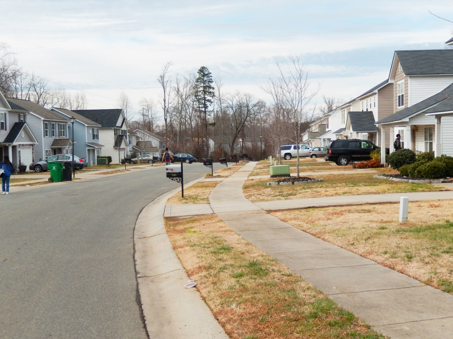 Many subdivisions built in the past 15 years did not plant street trees. Photo: Mae Israel